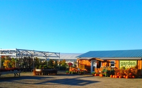 the shop of arthur greenhouses