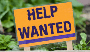 working at arthur greenhouses - help wanted for the season